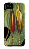 Tropical Plant on Black IV iPhone 5 Case