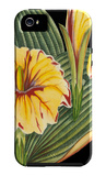 Tropical Plant on Black III iPhone 5 Case