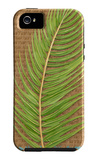 Block Print Palm VII iPhone 5 Case by Chariklia Zarris