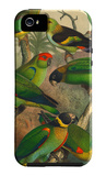 Tropical Birds IV iPhone 5 Case by  Cassel