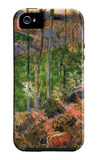 Small Breton Wooden Shoe iPhone 5 Case by Paul Gauguin