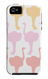 Multi Ostrich Family iPhone 5 Case by  Avalisa