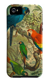 Tropical Birds III iPhone 5 Case by Cassel