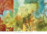 Midday Bloom II Kunstdrucke von Elise Remender
