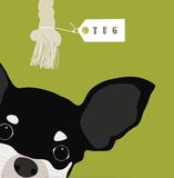 Peek-A-Boo: Chihuahua Prints by Yuko Lau