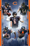 Chicago Bears 2012-13 Team Prints