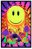 Have a Nice Trip Flocked Blacklight Poster Print