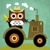 Owl on Tractor Art by Nancy Lee