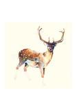 Le cerf aux chaussettes blanches Affiches par Charmaine Olivia