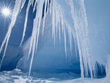 Icicles and Sun, Alta Bay, Antarctica Photographic Print by Frans Lanting