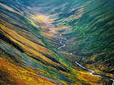 Fall Colors (Aerial), Bremmer Valley, Wrangell-St. Elias National Park, Alaska Photographic Print by Frans Lanting
