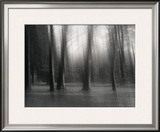 Untitled Framed Photographic Print by Clare Marie Barboza