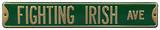 Fighting Irish Ave Green Steel Sign Wall Sign