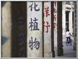 Man Riding Bicycle Along Street, Chikanzhen, Guangdong, Guangdong, China Gerahmter Fotografie-Druck von Ian Trower