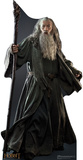 Gandalf - The Hobbit Movie Cardboard Stand Up Stand Up