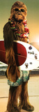 Star Wars-Chewie Surf Foto
