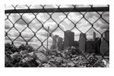 Downtown on the Rocks Fotografie-Druck von Evan Morris Cohen