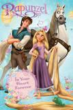 Rapunzel-Group Zdjęcie