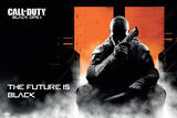 Call of Duty Black Ops 2 -Landscape Print