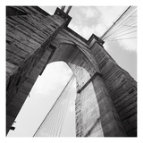 Towering Photographic Print by Evan Morris Cohen
