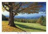 Blue Ridge Beauty Prints by Mike Jones