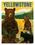 Yellowstone Go Greyhound c.1960s Gicléetryck