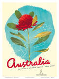 1935 Australia Shipping Prints by Gert Sellheim