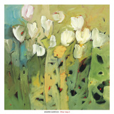 White tulips II Art by Jennifer Harwood