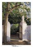 Acacia Posters by Poch Romeu