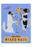 Mixed Nuts, Australian Shepherds Limited Edition by Ken Bailey