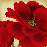 Red Peony I Prints by Linda Wood
