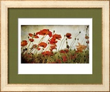 Orange Flower Patch Framed Photographic Print by Mia Friedrich