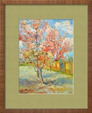Peach Tree in Bloom at Arles, c.1888 Framed Giclee Print by Vincent van Gogh