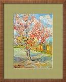 Peach Tree in Bloom at Arles, c.1888 Framed Giclee Print by Vincent van Gogh