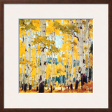 September Aspen Prints by William Hook