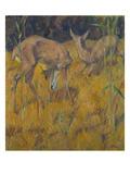 Rehe Im Schilf, 1909 Giclee Print by Franz Marc
