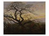 Ravens in a Tree (Bare Tree at the Coast of Ruegen, Or: Rookery on the Island Ruegen), about 1822 Giclee Print by Caspar David Friedrich