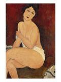 Sitzender Akt Auf Einem Diwan (Oder: La Belle Romaine), 1917 Print by Amedeo Modigliani
