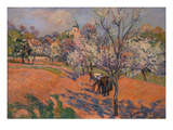 Peasants Sowing Beans in a Blooming Orchard Prints by Armand Guillaumin