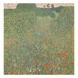 Meadow of Poppies, 1907 Reproduction procédé giclée par Gustav Klimt