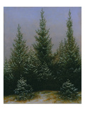 Spruce Forest in Snow (Dresdner Heide I.), ca. 1828 Giclee Print by Caspar David Friedrich