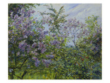 Blooming Lilac, about 1921 Giclee Print by Max Slevogt