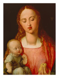 Madonna and Child (Madonna with Pear) Giclee Print by Albrecht Dürer