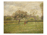 Apple Tree Blossom at Eragny, 1888 Giclee Print by Camille Pissarro