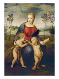 Madonna of the Goldfinch, about 1506 Impression giclée par  Raphael