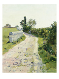 Sunny Path, about 1890 Giclee Print by Ferdinand Hodler