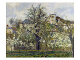 The Vegetable Garden with Trees in Blossom, 1877 Prints by Camille Pissarro