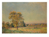Summer Landscape with Large Tree, 1886 Prints by Alfred Sisley