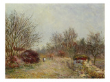 The Little Forest Giclee Print by Alfred Sisley