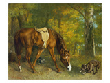 Pferd Im Walde, 1863 Art by Gustave Courbet
